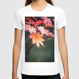 Autumn Japanese Maple Leaves T-shirt