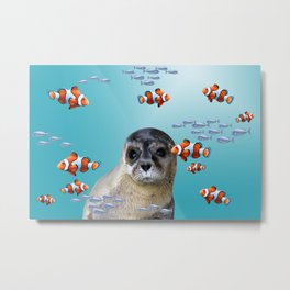 Seal between Clownfishes underwater ocean Metal Print