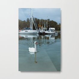Swan in front of boats at Lake Palic, Serbia / Blue / Dawn Metal Print