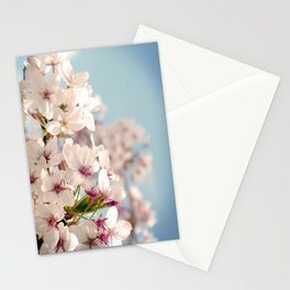 Spring, Flower Photography, Pastel, Pink, Romantic Cherry Blossom, Art Deco - 8 x 10 Wall Decor Stationery Cards