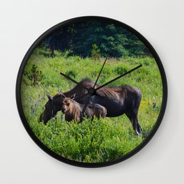 Moose and calf at Maligne Lake, Jasper National Park Wall Clock