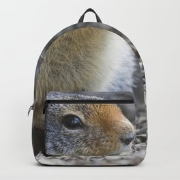 Ground Squirrel Backpack