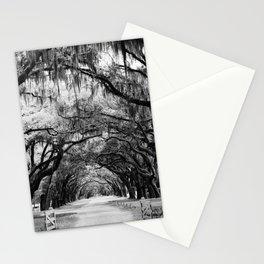 Spanish Moss on Southern Live Oak Trees black and white photograph / black and white art photography Stationery Cards