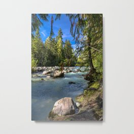 Small arm of Cheakamus River  Metal Print