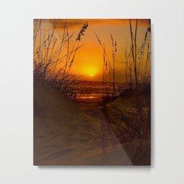 Sea Oats Sunrise Metal Print