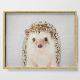 Hedgehog - Colorful Serving Tray