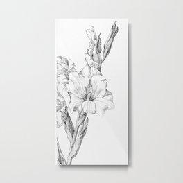 Julie de Graag - Gladiolus Metal Print