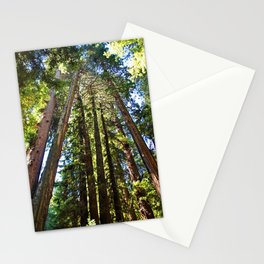Muir Woods- vertical Stationery Cards