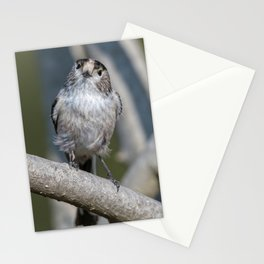long tailed tit bird on tree Stationery Cards