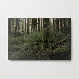 Mount Baker National I Metal Print