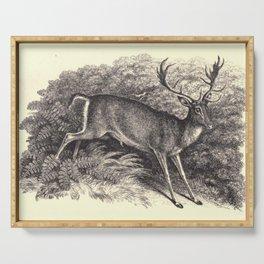 Antique Deer Serving Tray