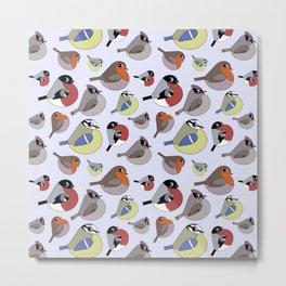 Cute little birds Metal Print
