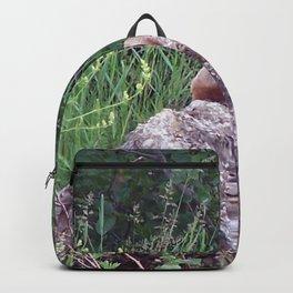 Groundhog on a Rock Backpack