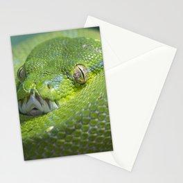 Green Tree Python Stationery Cards