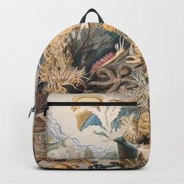 Ocean Life by James M. Sommerville Backpack