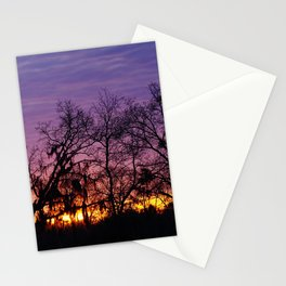 Sunrise Oaks and Moss Stationery Cards
