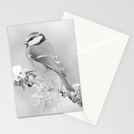 Winter beauty Stationery Cards