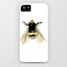 Bee - Natural Wildlife Illustration iPhone Case