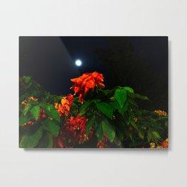 Moonshine Garden Metal Print