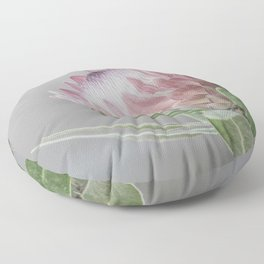 Protea In Isolation Floor Pillow