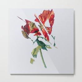 Mutated poppy Metal Print