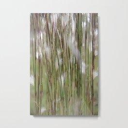 Wispy on green and magenta reeds Metal Print