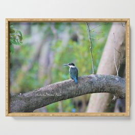 Collared Kingfisher Serving Tray