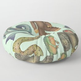 Cryptids of the Americas Floor Pillow