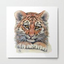 Cute Tiger Cub 903 Metal Print