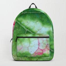 Vine Leaf in autumn fall macro 8 Backpack