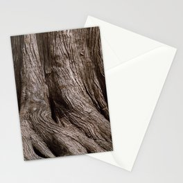 Tree Trunk Root Texture Stationery Cards