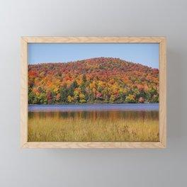 Fall Pond Scene Framed Mini Art Print