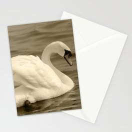 Mute Swan 182 Tint Donegal Ireland Stationery Cards
