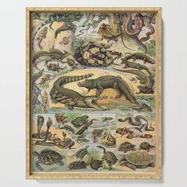 Adolphe Millot - Nouveau Larousse Illustré - Reptiles (1906) Serving Tray