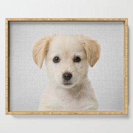 Golden Retriever Puppy - Colorful Serving Tray