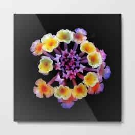 Camara flower - natural mandala Metal Print