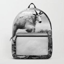 MOUNTAIN GOATS // 1 Backpack