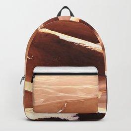 Cold Dunes Backpack