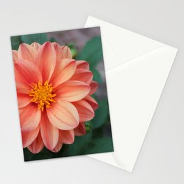 Orangey Stationery Cards
