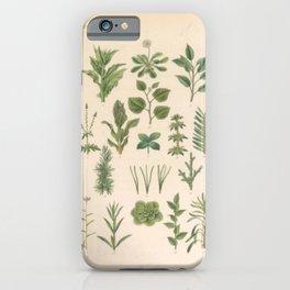 Botany Chart iPhone Case