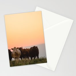 Sunset Cattle Stationery Cards