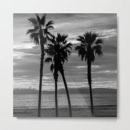 Sunset Though The Palms 1-13-19 (B&W) Metal Print