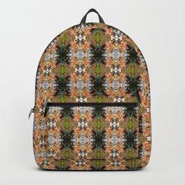 Cliff Hanger L2 Backpack