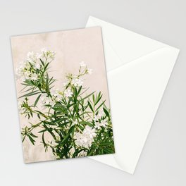 White oleander on Elba Island | Italy | Travel Photography | Art Print |Botanical Photo Stationery Cards