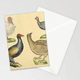 035 meleagris gatto pavo Helmeted Guineafowl Eurasian Capercaillie10 Stationery Cards