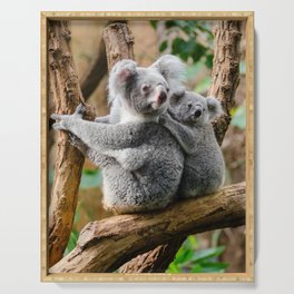 Koala mom and child Serving Tray