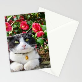 Orazio Prince of flowers Stationery Cards
