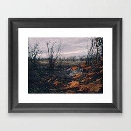 Dyke Marsh Wildlife Preserve Framed Art Print