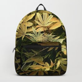 Yellow Cannabis Family Backpack