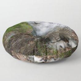 Alaskan Snowy Owl - Summer Floor Pillow